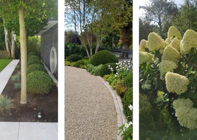 Gardening & Landscaping in Dublin