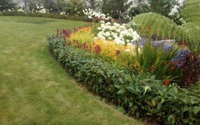 Top 10 Tips To Start Gardening