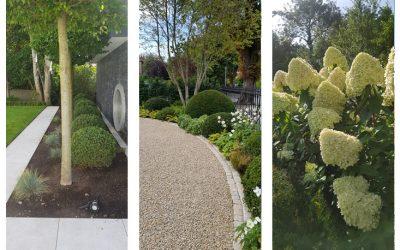 Garden Consulations